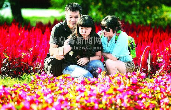 秦皇岛野生动物园花香阵阵