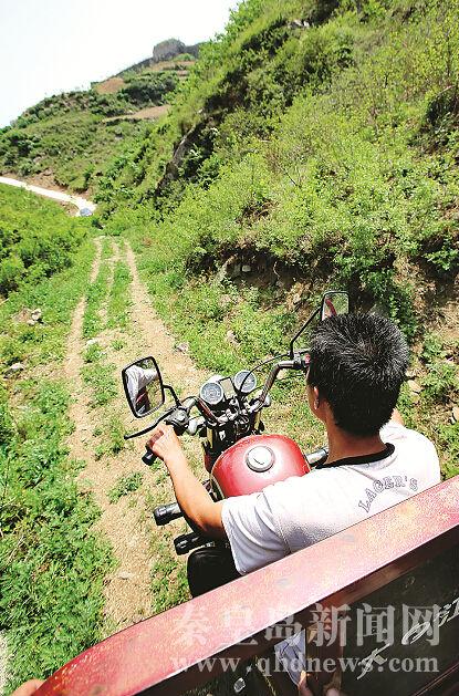 秦皇岛青龙县农民承包荒山 种下绿色希望(图)